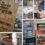 Ahoy, Book Junkies! (The Sunday Leader – 2012/01/29)